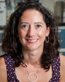 Lisa Taneyhill