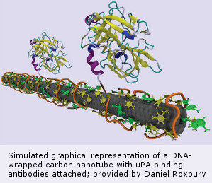 DNA-wrapped carbon nanotube
