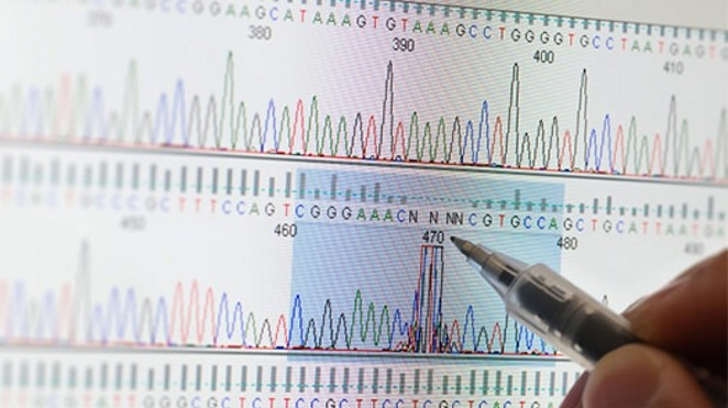computer screen shows a chart of dna sequencing