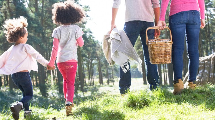 family of four walking through grassy area with picnic basket and blanket