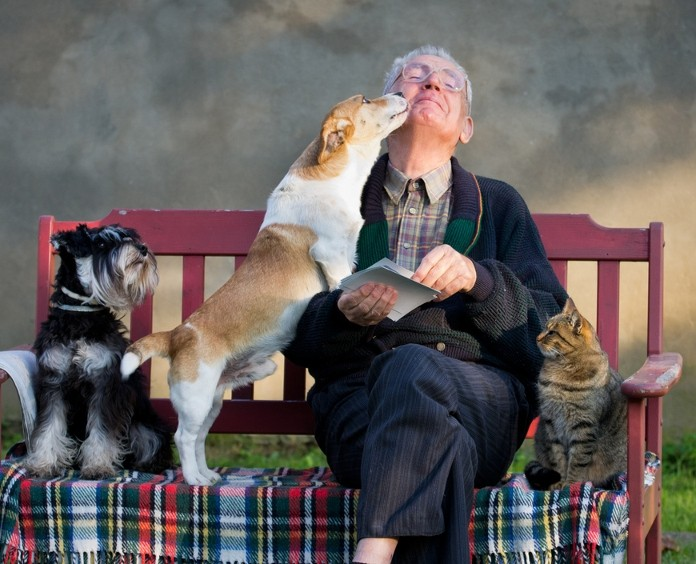 The Health Benefits Of Owning Pets